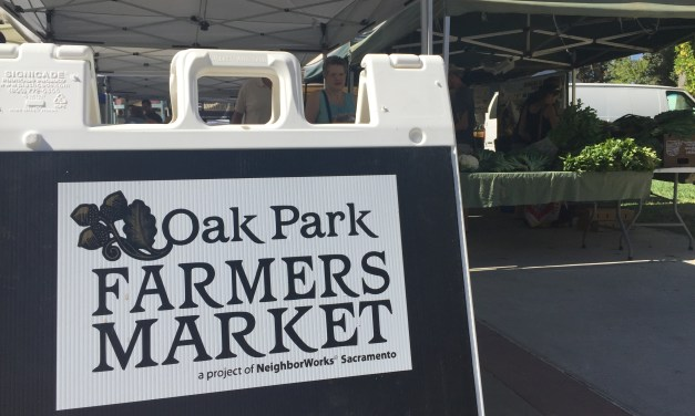 Oak Park Farmer's Market Skills Fair