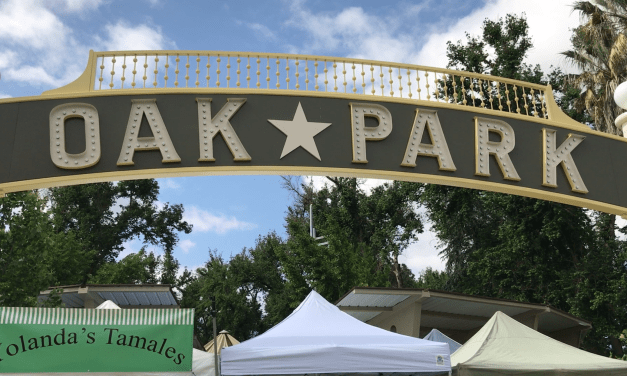 VIDEO: Oak Park Farmers Market provides platform for small businesses
