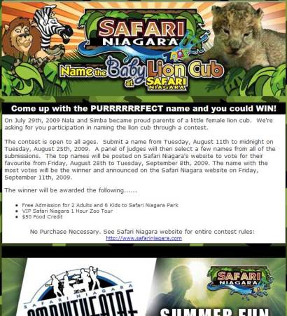 20090814_safari_niagara_email_newsletter