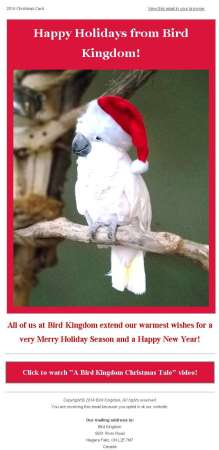 20141217_bird_kingdom_email_newsletter