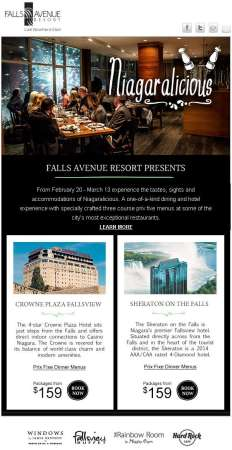 20150218_falls_avenue_resort_email_newsletter