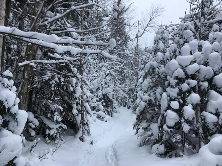 Trap Dike Winter Climb