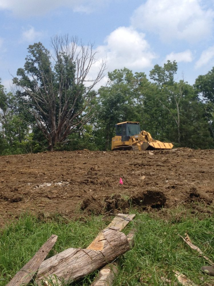 Clearing the way to build our homestead