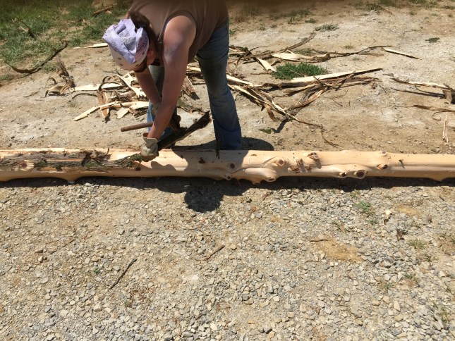 To build with cordwood, you must remove the bark first to prevent rot and pest intrusion. #cordwood #naturalbuilding