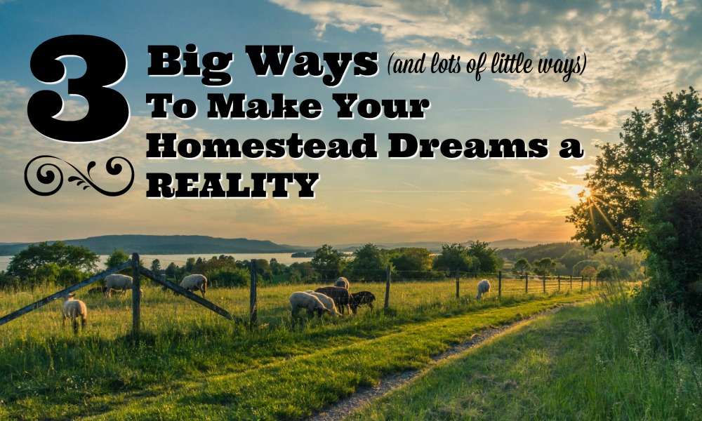 Want to homestead but feeling stuck? Here are some ideas for how to shift your thinking and take yourself from homestead dreaming to doing