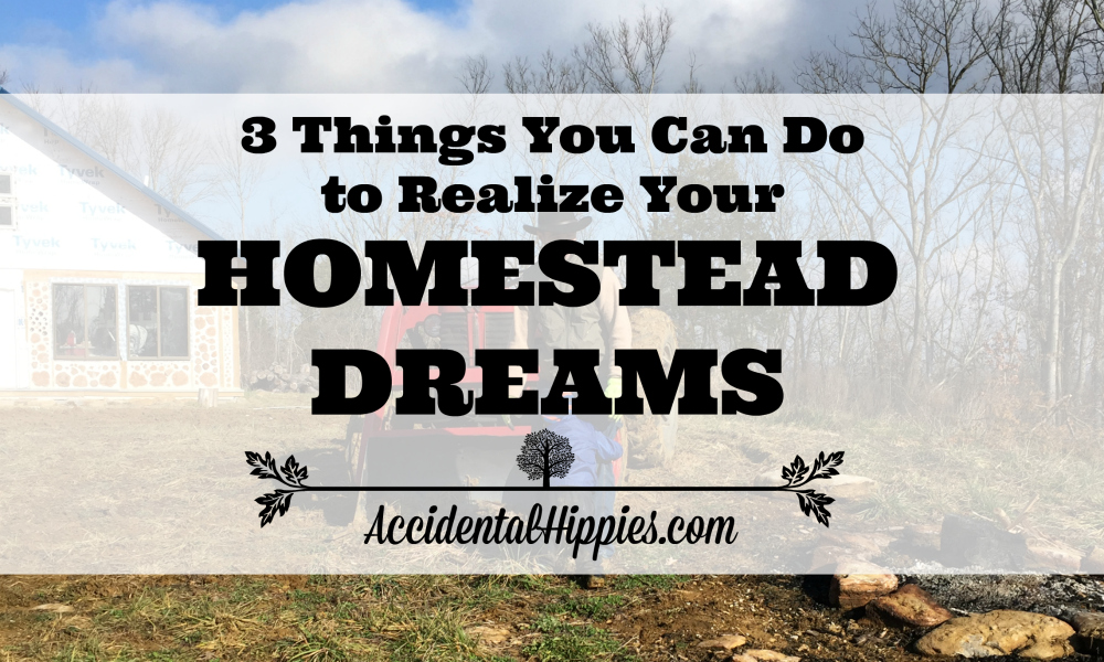 Our three biggest strategies that helped us escape suburbia so we could build our dream homestead on our own land