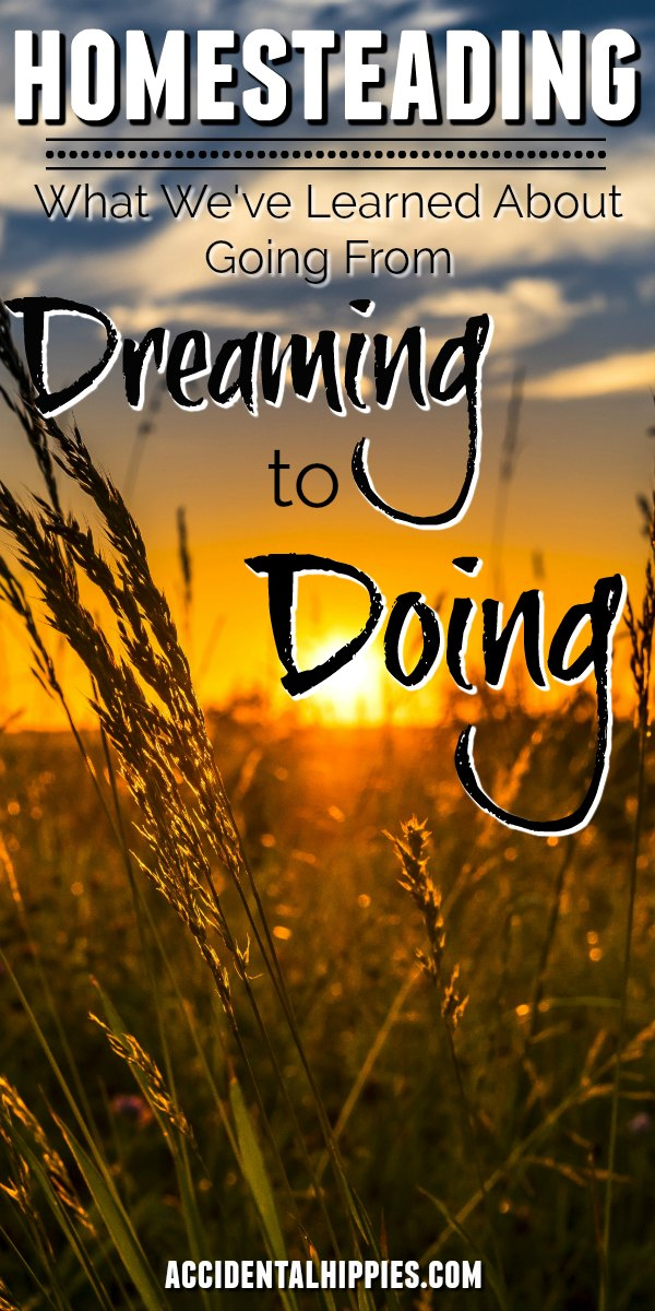 What's holding you back from living the life you want? We've learned a lot in the past four years about taking the plunge from living the life we've been sold to building the homestead we've always wanted. Learn our biggest mindset tips to help you get closer to your goals. #homesteading #homesteadlife #homesteaddreaming #dreamhomestead #mindset #goalsetting
