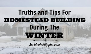 You want to build a homestead from scratch, but wonder how to handle it when the weather turns cold. Here's what we're doing as we're building our off-grid cordwood home during the winter