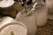 fermenters