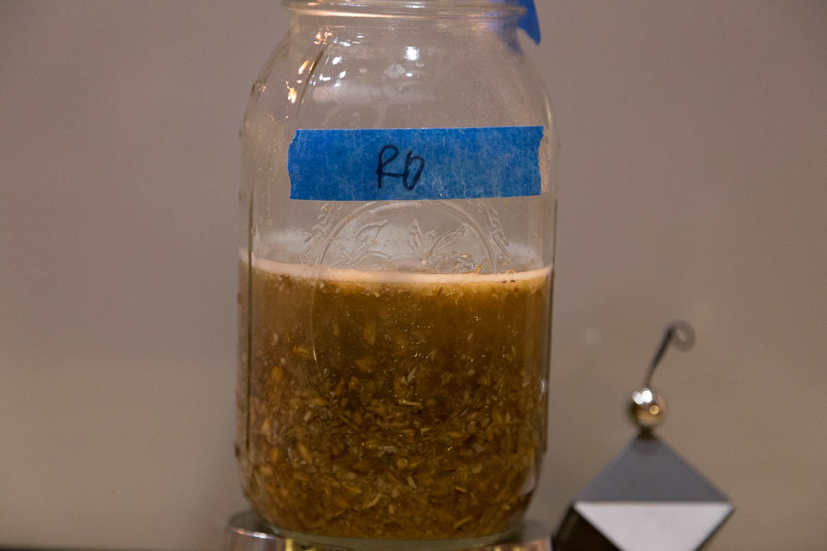 RO test mash results. Note the fraction of wort.