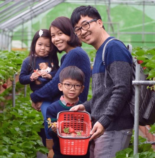 Food-strawberries-taipei-regent (2)