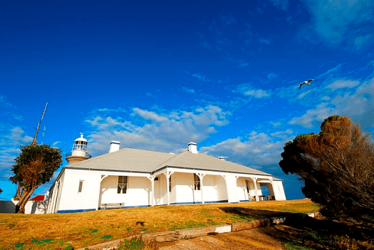 Image-of-Australia-nsw-whales-Montqgue-Island-Lighthouse