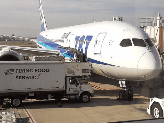 All-Nippon Airways Boeing 787 Dreamliner.