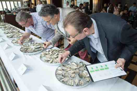 Hong-kong-cafe-deco-oyster-shucking-judges