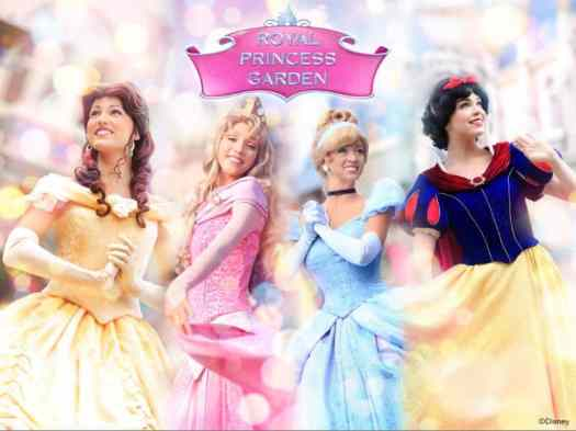image-hong-kong-disneyland-disney-princesses