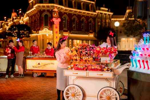 image-of-hawker-at-hong-kong-disneyland