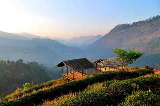 angkhang-nature-resort-in-muntains-near-chiang-mai-thailand