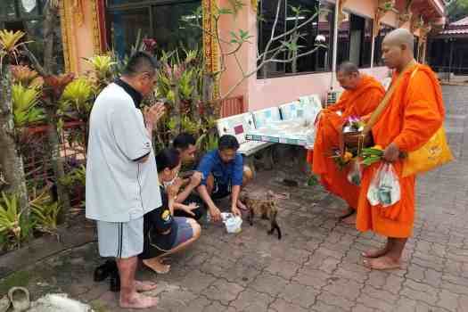 buddhists-making-merit-at-phuket--temple