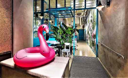 image-of-rubber-flamingo-at-flamingo-bloom-tea-salon