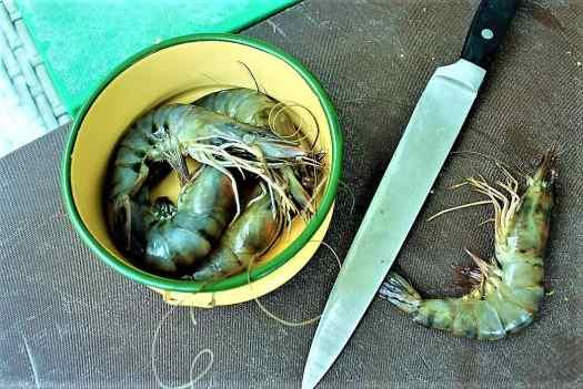 image-of-fresh-tiger-prawns