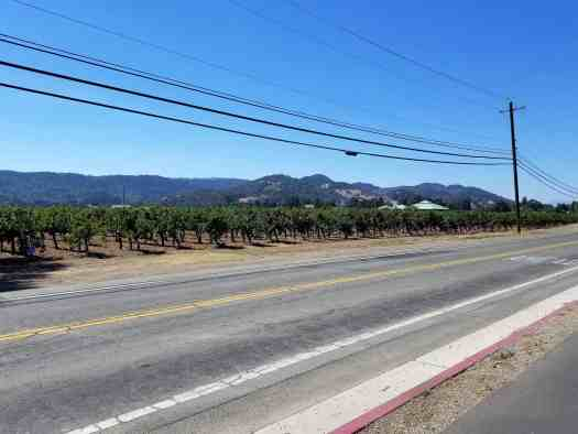 image-of-napa-valley-vine-trail-vineyards