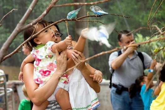 family-at-zoo-atlanta