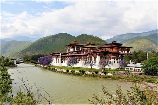 bhutan-monastery-punakha-dzong