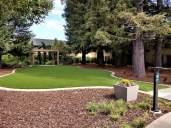 Hotel garden.