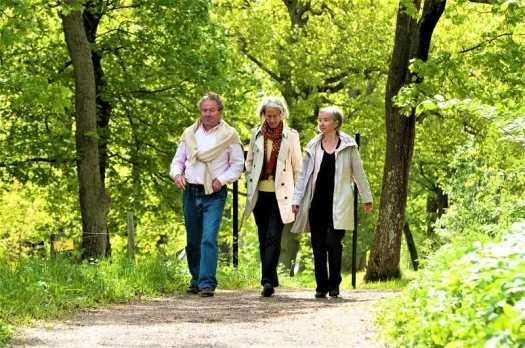 spring-walk-through -Djurgården-park-Stockholm,-Sweden.