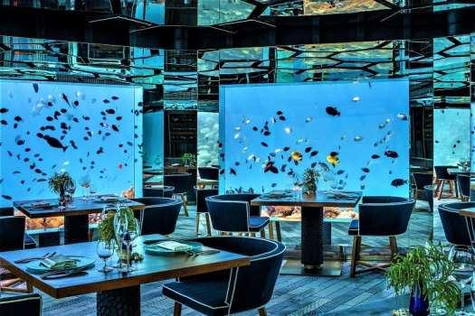 sea-underwater-dining
