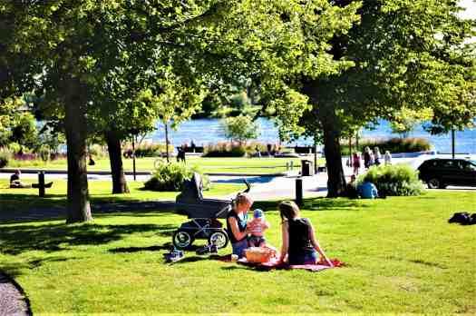 umea-sweden-in-summer