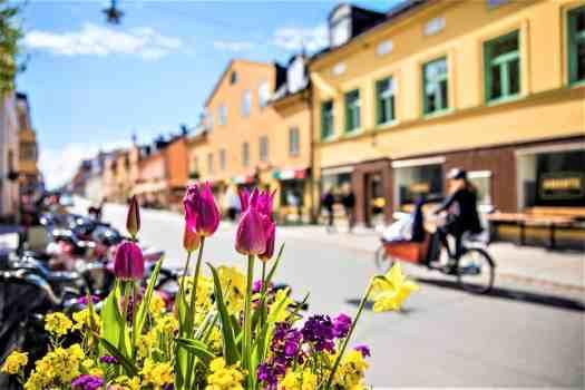 biking-in-uppsala-sweden
