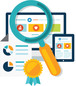 Website-Audit-Icon1