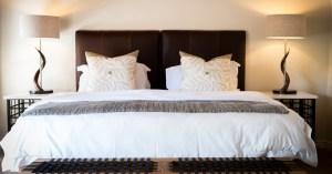 Zebra Hills Room