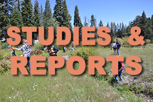 Studies-and-Reports