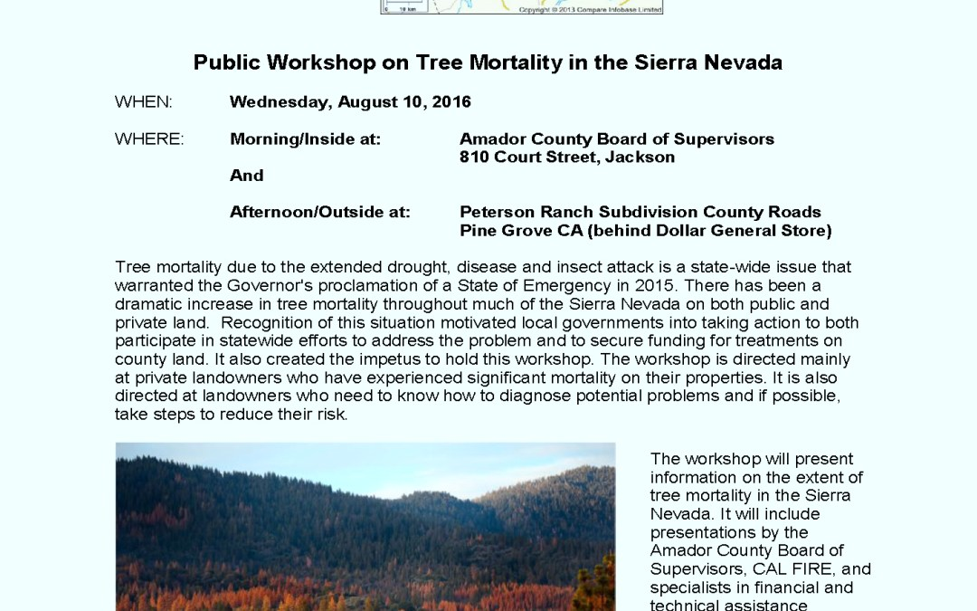 Tree Mortality Workshop and Field Trip scheduled for August 10