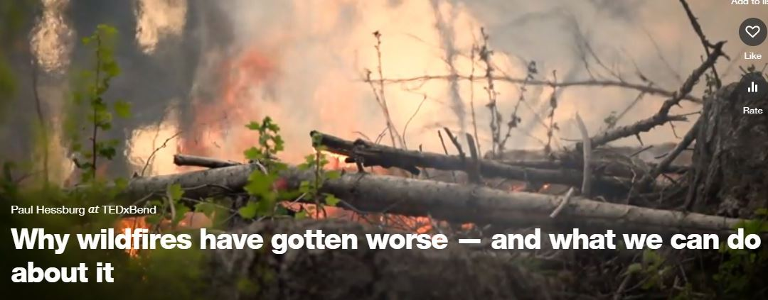 TED Talk: Why wildfires have gotten worse — and what we can do about it