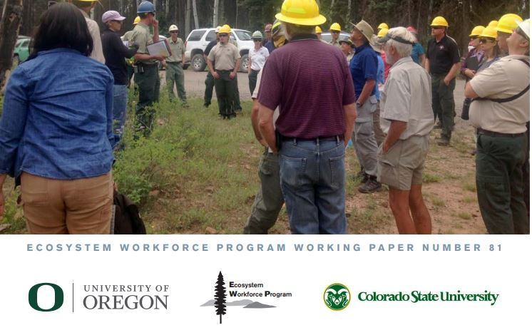 New Report: Strategies for Success Under Forest Service Restoration Authorities
