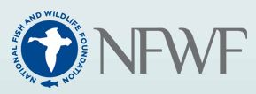 NFWF New Watersheds Grant Program