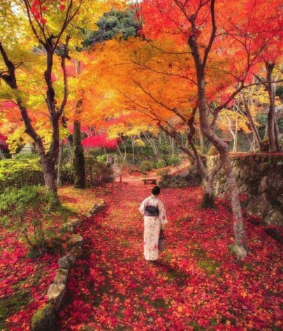 Japanese Lady in Woods – travelcaffine.com
