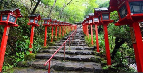 Japanese Red Pathway –alamy.com