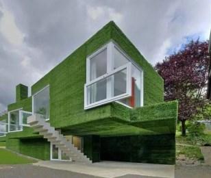 Grass House – itechgo.com