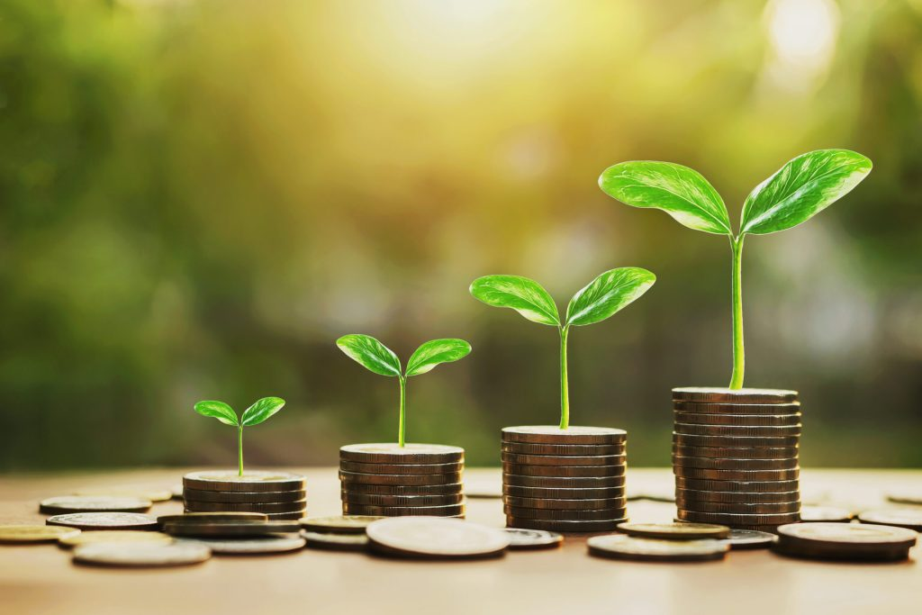 Wealth creation and growth