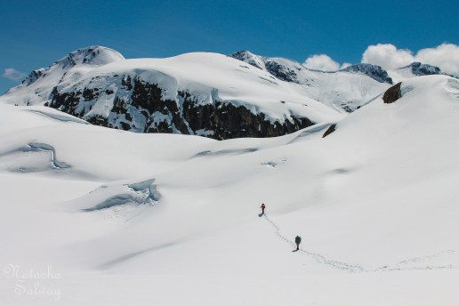 Natasha Salway: Snowy Big Jim - 1st Place, Winter Activity