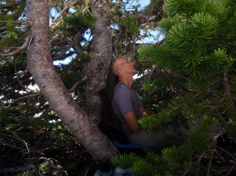 Peggy Taylor: Walter in native habitat