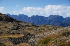 Laura King - Rogers Ridge