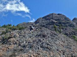 Sandy Briggs - Mt Arrosmith on the UnJudges Route