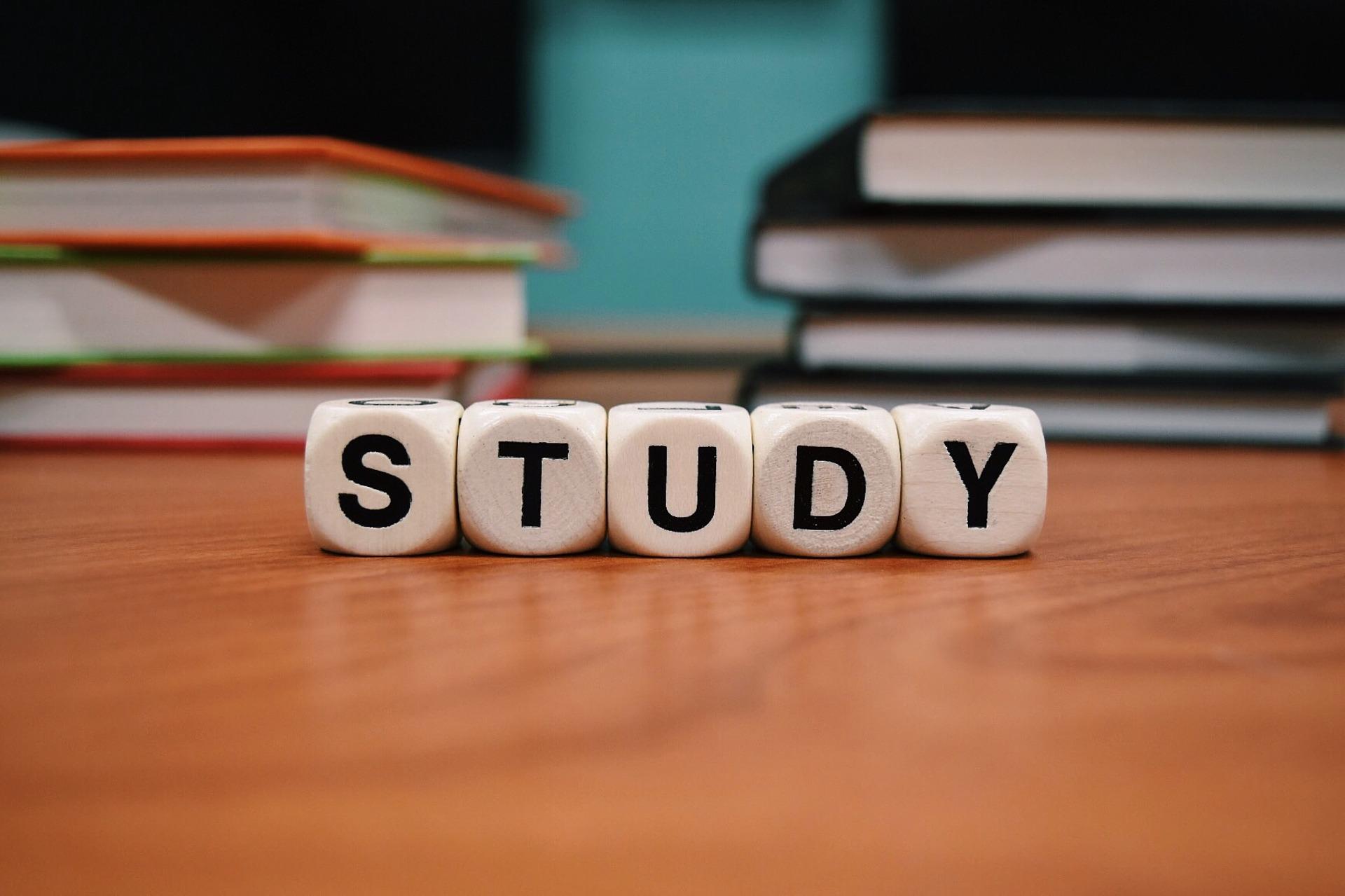 STUDY 勉強