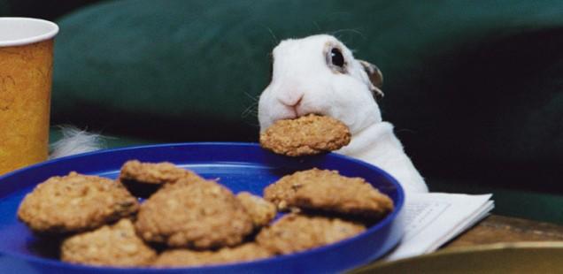 cookiethief