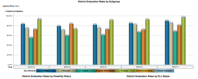 District Graduation Rates by Subgroup